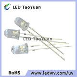 5mm UVled lichtemittierende Dioden-Veilchen