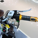 biciclette elettriche 48V-350W con Ce approvato (CW-22)