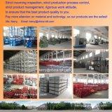 Гондола лесов вашгерда доступа платформы фабрики Zlp630 горячая гальванизированная ая сталью