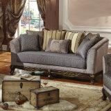 Lo strato americano del salone del sofà ha impostato sulla vendita