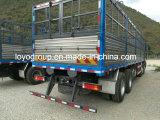 승진을%s F3000 10X4 말뚝 화물 자동차 트럭 화물 트럭