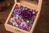 De houten Bewaarde Gift van de Bloem voor de Decoratie van Kerstmis