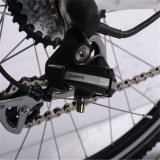 지원된 페달 전기 자전거 (RSEB-304)를 가진 무브러시 모터