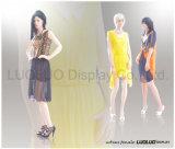 Mannequins femminili di modo per vestiti