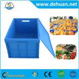Casella di plastica popolare di giro d'affari di memoria di colore blu