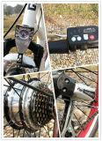 جميلة نموذج [250و] صرة محرك [إن] 15194 درّاجة كهربائيّة
