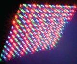 LED 위원회 빛
