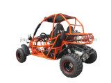 800cc ATV Sport ATV Buggy Lz800-5 avec homologation EPA