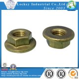 Flange Nut Hex Flange Hut Flange Hex Nut