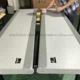 Secugate 650 33 Zonen-Türrahmen-Metalldetektor-Antimetalldetektor