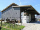Casa Prefab do armazenamento do alimento da construção de aço com bom preço