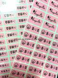Neuer unbelegter Schule-Kursteilnehmer-Kurbelgehäuse-Belüftung gedruckter Namensaufkleber