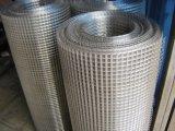 rete metallica dell'acciaio inossidabile 314/316L/panno/rete