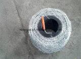 粉によって塗られる電流を通されたとげがある鉄ワイヤー