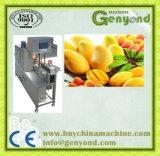 高く効率的なマンゴの皮機械