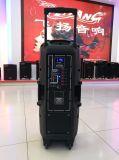 Feiyang/Temeisheng 최신 판매 두 배 10 인치 Bluetooth와 무선 Mic F-73D를 가진 휴대용 당 스피커