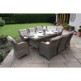 Sala de visitas do pátio do jardim que janta a tabela quadrada de vime cinzenta da mobília com vidro