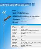50W fuori dal sistema solare dell'indicatore luminoso del giardino di energia eolica di griglia con la batteria di litio ed il APP Fuction