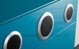 Module à haute brillance UV en bois moderne de TV avec le haut-parleur (mer 204)