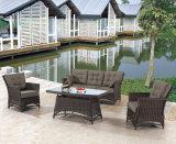 Osier de patio de jardin/sofa de rotin réglé - meubles extérieurs (LN-2135)