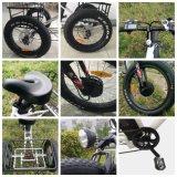 뚱뚱한 타이어 최신 판매 3 바퀴 전기 화물 세발자전거