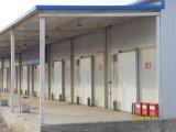 Refrigerador do quarto frio do projeto do quarto frio de 100 toneladas (LAIAO)