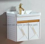 Fornitore di alluminio di /Vanity del Governo di stanza da bagno