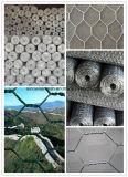 Горяч-Окунутое гальванизированное шестиугольное плетение мелкоячеистой сетки с конкурентоспособной ценой высокого качества