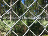 Sailin PVCチェーン・リンクの塀の金網