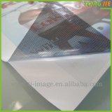 Kundenspezifischer Grafik-Badezimmer-Fußboden-wasserdichter Vinylaufkleber