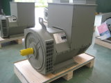 8kVA-2500kVA Three Phase Brushless Synchronous WS Alternator (JDG)
