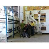 Limpiador de granos de calidad de calidad 5X