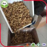 Organische Okkernoot met Pitten de Van uitstekende kwaliteit van de Okkernoot voor het Maken van de Olie