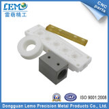 Prototype plastique en nylon OEM fabriqué par usinage CNC (LM-0509Q)