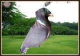 Esca di caccia della colomba, esca leggera