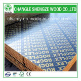 Heißes Sale 18mm Printed Logo Film Faced Plywood