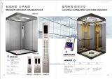 Ascenseur résidentiel de passager de Fujizy