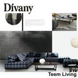Migliore sofà D-48 del salotto del sofà/Chaise del progettista di Divany
