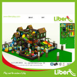 Fabbrica Price Small Indoor Playground con ricerca & sviluppo Team di Our Own