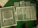 Cage 100% en plastique de transport de poulet de PE de Vierge