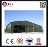 Edificio prefabricado de la estructura de acero (ZY118)