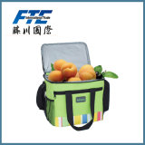 Saco mais fresco saco refrigerando isolado do saco de gelo do saco