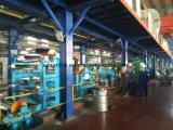 Farbe beschichtete PPGI Stahlring für Verkauf in China