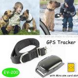 Mini perseguidor impermeável do GPS dos animais de estimação (EV200)