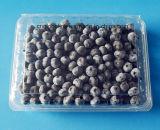 Grano de alimentos de plástico Blueberry Punnet Fruit Box de embalaje