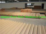 PVC Madera Plástico Puerta Línea de Producción ( SJSZ -92/ 188)