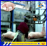 Porc Slaughter House Swine Abattoir Equipment Line pour Hog Hoggery Pork Meat Production Machinery