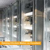 Automatisches pp.-Riemen-Enden-Huhn-Portdüngemittel bewirtschaftend, System säubern