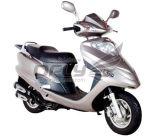 """""""trotinette"""" do gás 50cc/125cc/150cc com certificado da CEE"""