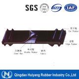 Fornitore d'acciaio del nastro trasportatore del cavo dello Shandong